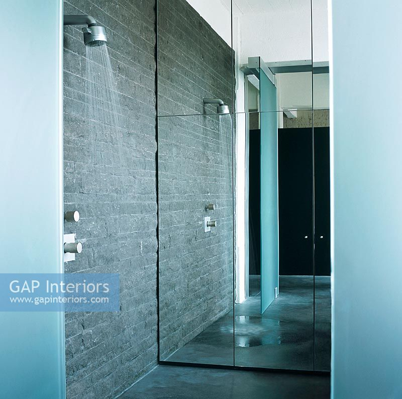 Shower With Floor To Ceiling Mirror