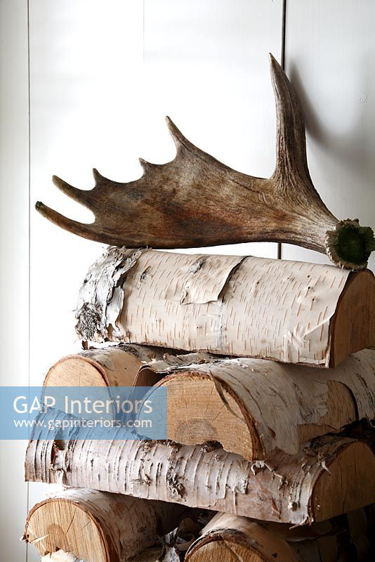 Logs and antler