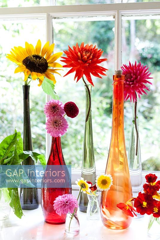 Dahlias and Sunflowers in colourful vases