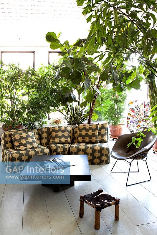 Sun lounge with plants