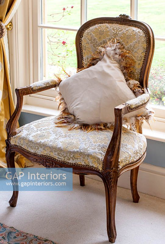 Antique armchair with velvet cushion trimmed with chicken feathers