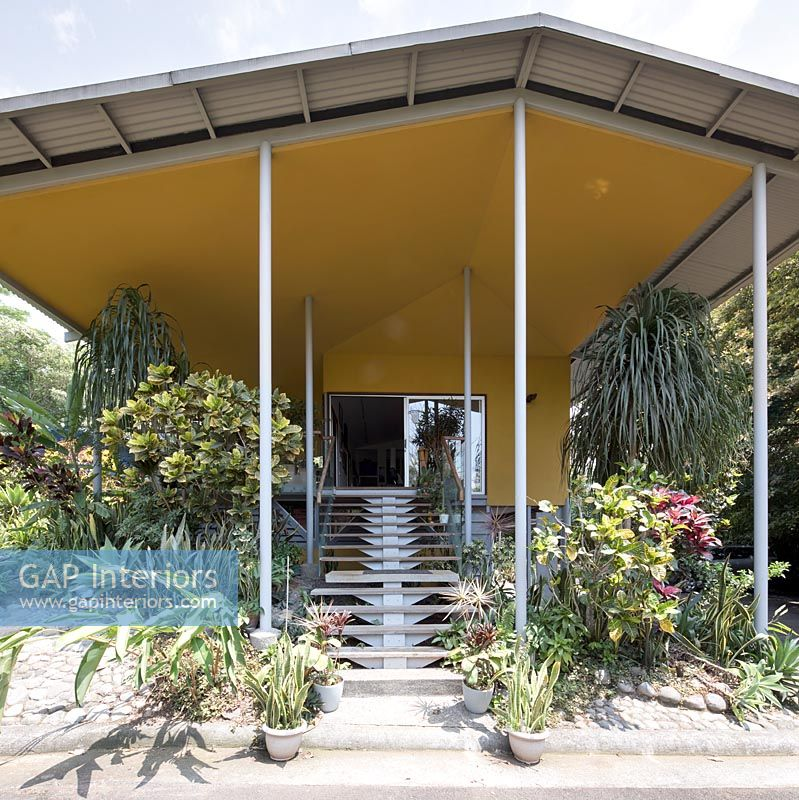 Entrance to contemporary house surrounded by tropical planting