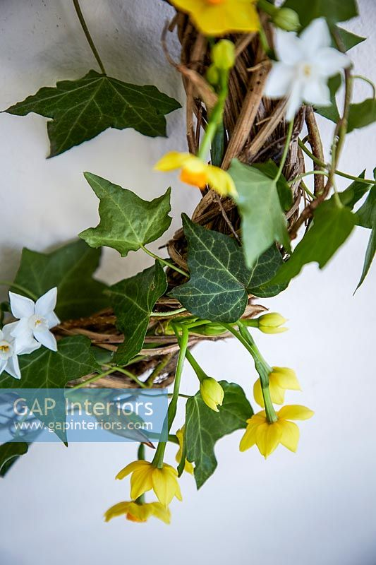 Wreath with Narcissus flowers and Ivy foliage