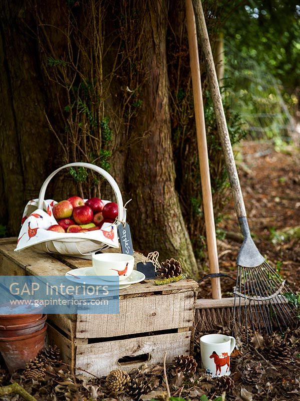 Garden detail with basket of apples