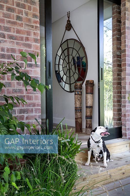 Pet dog sitting on doorstep of modern house with view through front door