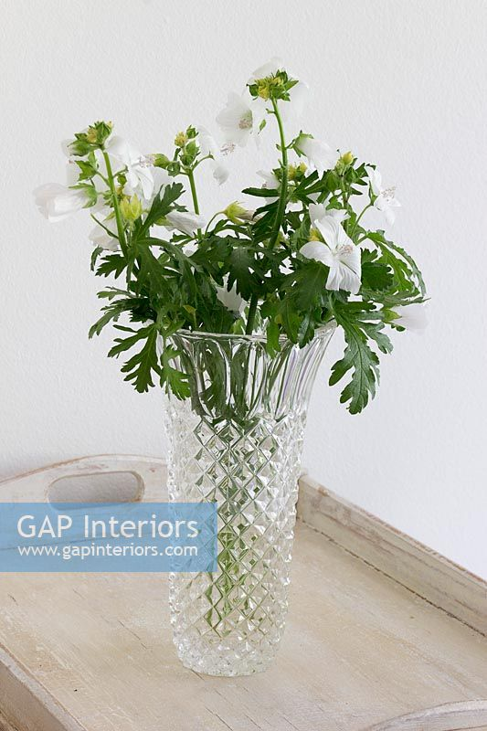 Country flowers in vase