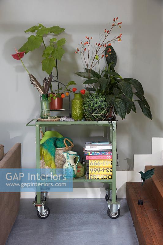 Green trolley with houseplants and accessories