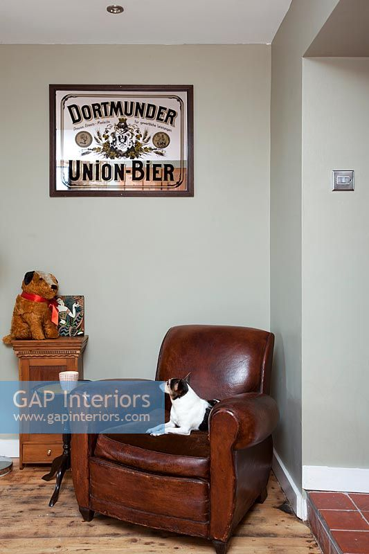 Pet dog on vintage brown leather armchair