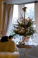 Living room with christmas tree beside the front window and cat sleeping on the settee