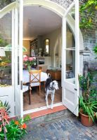 Dog standing at French windows