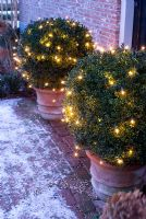 Christmas lights outside front door