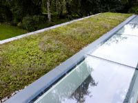 Detail of green roof and skylight windows