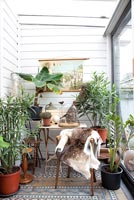 Houseplants in conservatory