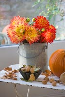 Dahlias in zinc bucket on white metal table