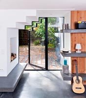 Contemporary fireplace and glazed door
