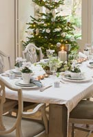Dining set for christmas meal with Cyclamen in pots