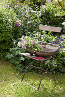Vintage trug on chair