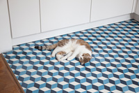 Cat lying on kitchen floor