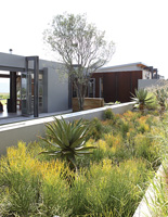 Contemporary house and garden with succulents