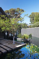Contemporary garden with pond