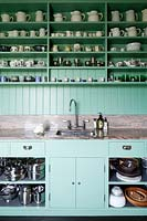 Green kitchen units and shelving