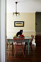 Cat sitting on vintage dining table