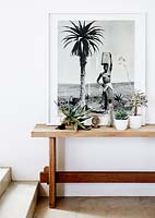 Houseplants on wooden console table
