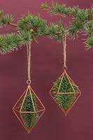 Copper prisms containing pine foliage, hanging from christmas tree