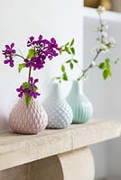 Flowers in patterned vases