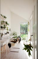 White study with houseplants