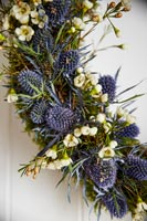 Wreath of Sea holly flowers