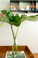 Glass vase with green foliage