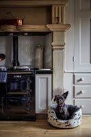 Pet dog in bed by aga in classic kitchen