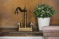 Classic mixer tap in country kitchen