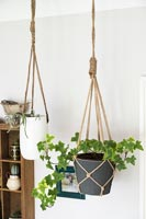 Rope macrame plant holders
