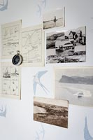 Nautical pictures on wall with swallow wallpaper