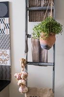 Terracotta pot of herbs hanging on ladder in kitchen with garlic