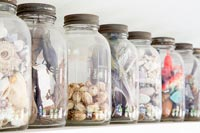 Glass jars filled with found objects