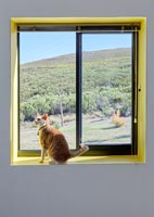 Pet cat sitting on windowsill with views of countryside beyond