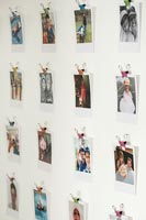 Family photographs clipped to wall with small bulldog clips