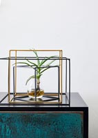 Plant in glass vase and metal frame on sideboard