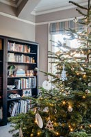Christmas tree and bookcase