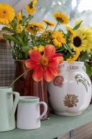 Country vases of autumn cut flowers