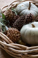 Wicker basket with pumpkins