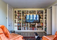 Large bookcase wall in modern living room