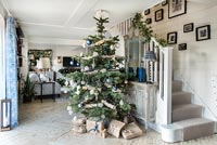 Large Christmas tree in modern country hallway