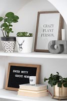 Houseplants and pictures on white shelving