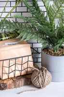Envelopes of seeds in wire basket next to fern in plant pot