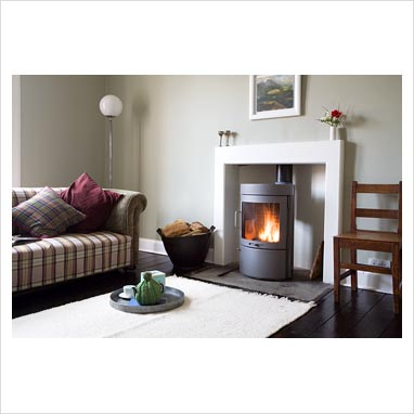 GAP Interiors Modern Living Room With Wood Burning Stove